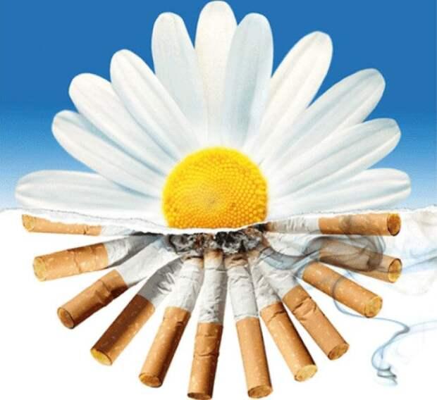 Заговоры, обряды и ритуалы против курения