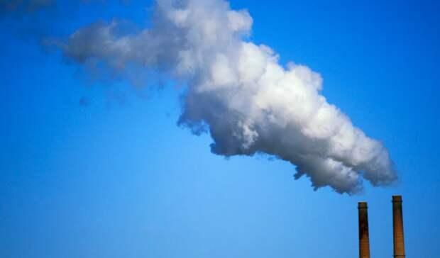 Варианты поддержки компаний врамках программы «Чистый воздух» изучат министерства