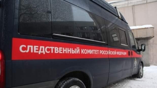 Уголовное дело по факту убийства школьницы возбудили в Нижегородской области