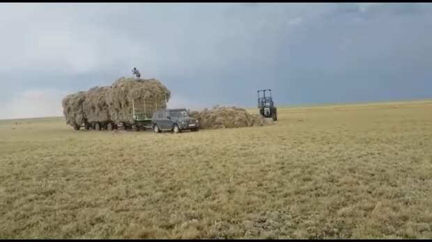 В Сети показали, как фермеры используют Гелик вместо трактора (видео)