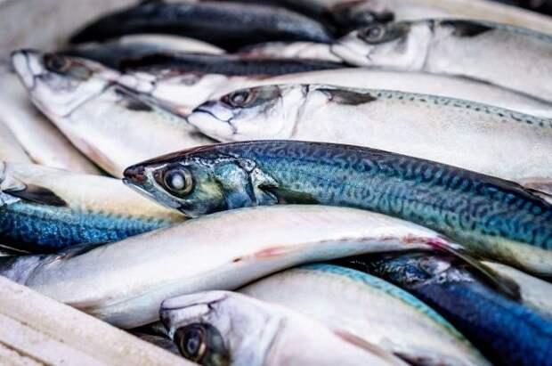 Россельхознадзор спрогнозировал возвращение российской рыбы в Китай