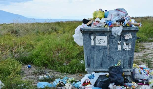 «Шок отпроисходящего»: петрозаводчане возмутились свалкой мусора около контейнеров