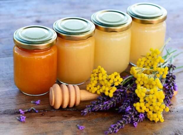 9 золотых рецептов лечения травами и продуктами пчеловодства: исцеляемся без таблеток и лекарств!