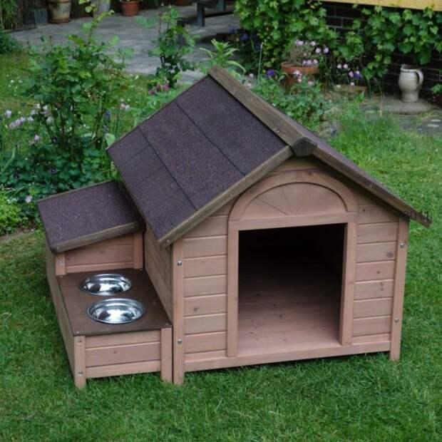 Будка для собаки: лучшие идеи и пошаговая инструкция (80 фото)