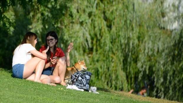 Потепление до 36 градусов ожидается в ряде регионов России на этой неделе