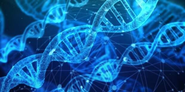 Лекция о видах и свойствах белков состоится в МГУПП