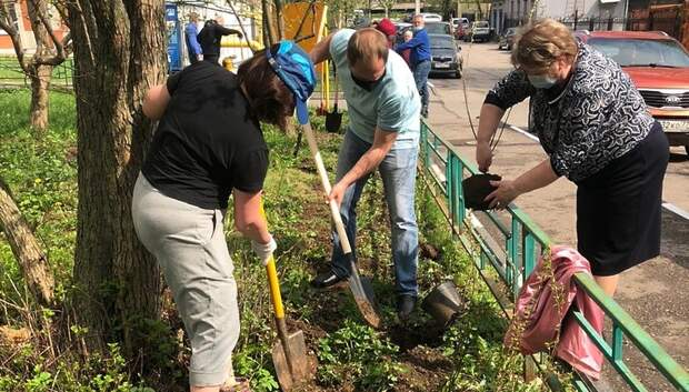 100 кустов сирени высадили в микрорайоне Дубровицы Подольска