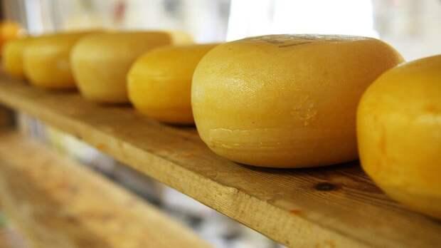 Украина неможет получить отРостовской области почти 20 тонн сыра исметаны