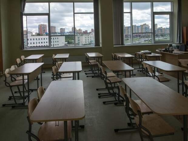 Аналитики выяснили, в каких сферах хотят работать российские школьники