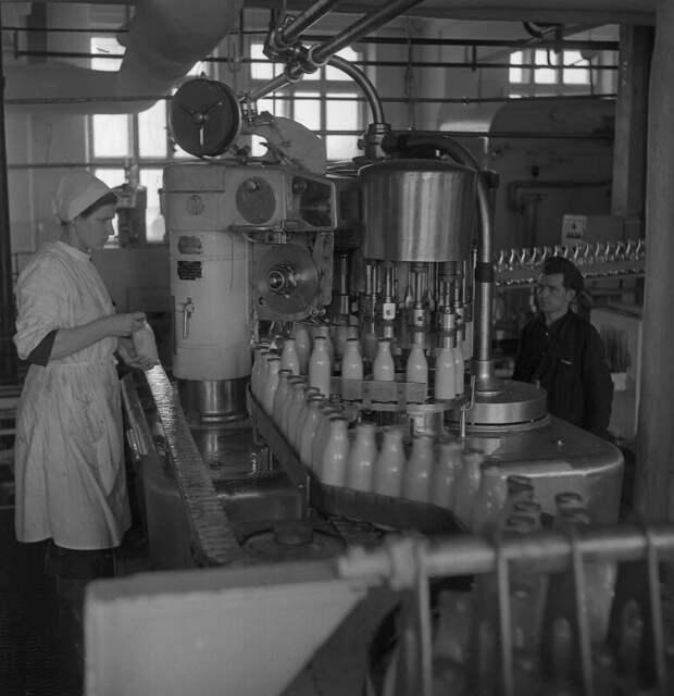 Перерабатывали 180 тонн молока в смену: фотоистория уссурийского молокозавода