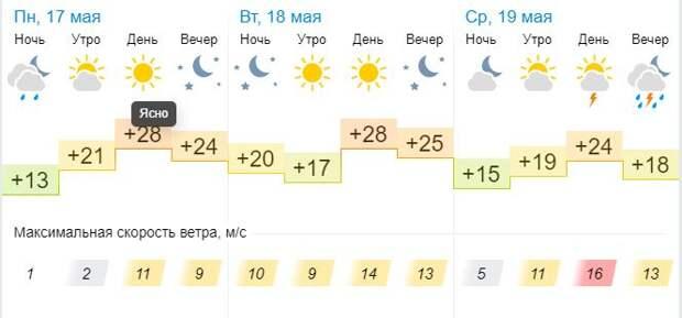 В Тамбовской области установится аномально жаркая погода