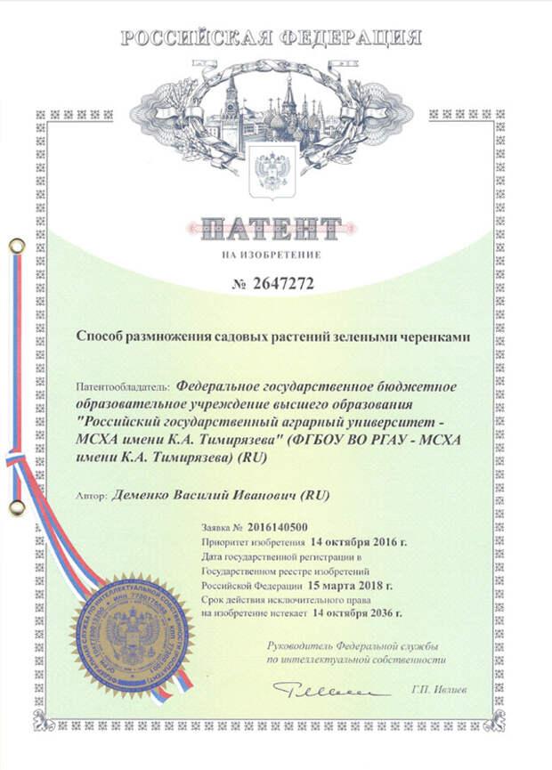 Что за новый способ черенкования растений запатентован в России?