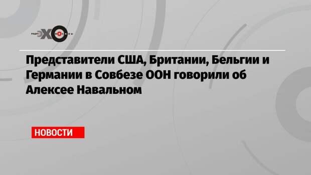 Представители США, Британии, Бельгии и Германии в Совбезе ООН говорили об Алексее Навальном