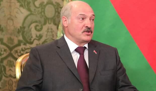 Историк Фридман об иске белорусов против Лукашенко: Придется нести ответственность