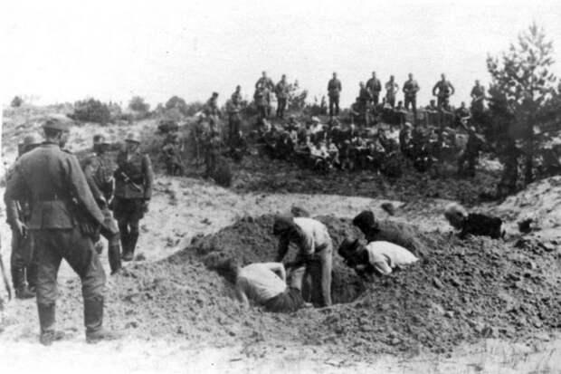 Трагедия Жестяной Горки: что творили нацистские каратели под Новгородом