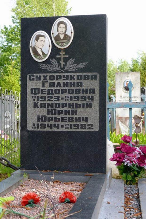 Злой рок Юрия Каморного