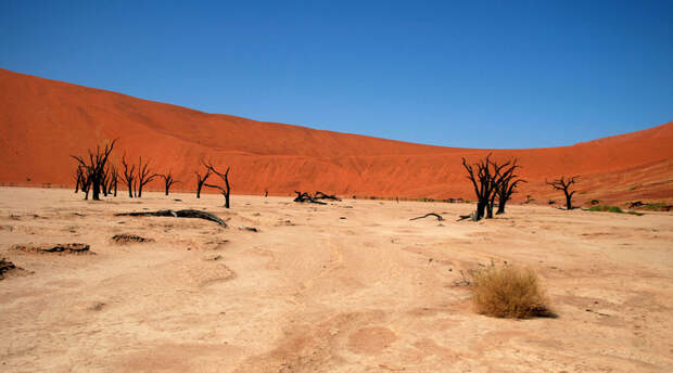Марсианские ландшафты Земли