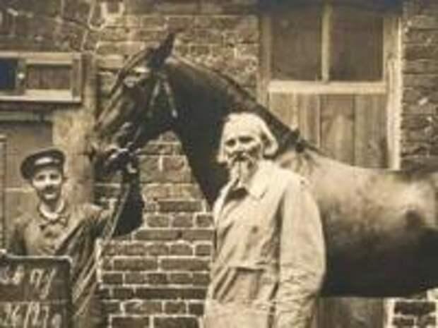 В чём секрет лошади, поразившей весь мир своим исключительным интеллектом в начале XX века