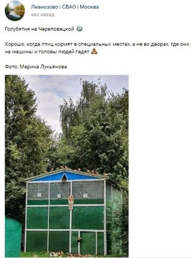 Фодокадр: голубятня на Череповецкой