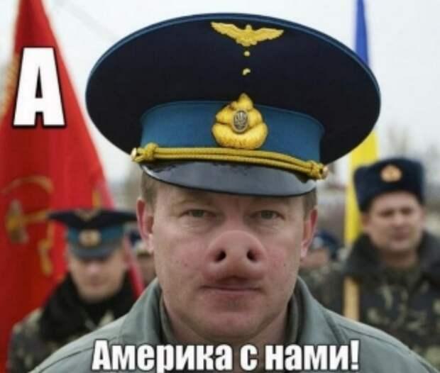 Внешнеполитическая стратегия Украины: погибнуть в войне с Россией