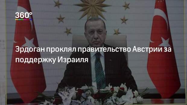 Эрдоган проклял правительство Австрии за поддержку Израиля