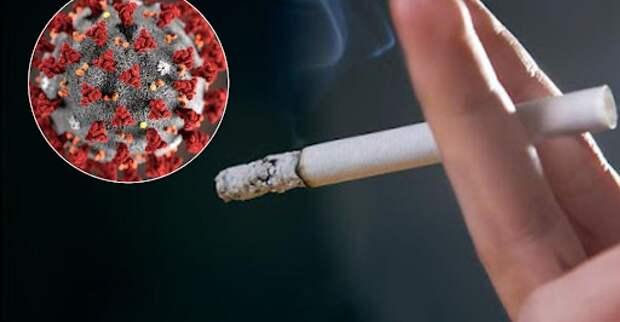 Может ли курение защитить от заражения COVID-19? Мифы и реальность