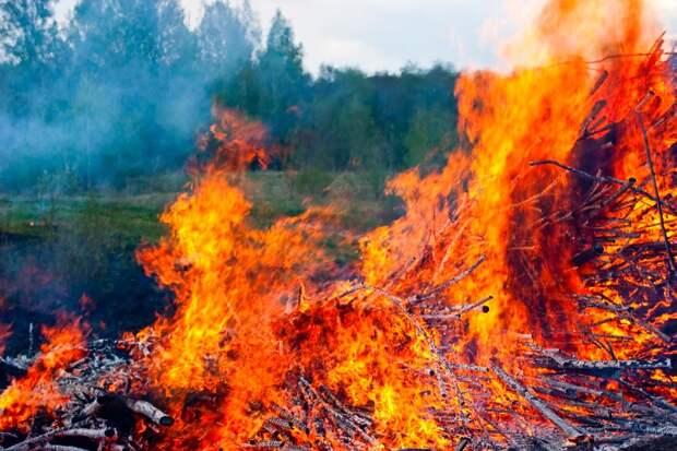 Мир объят огнем. Что происходит с нашей планетой?