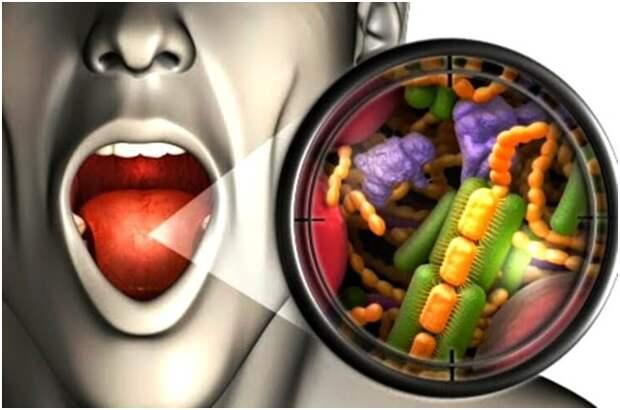 30 интересных фактов о человеческом организме.
