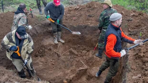 Поисковики нашли родственников солдата, чьи останки покоились на стройке в Ленобласти