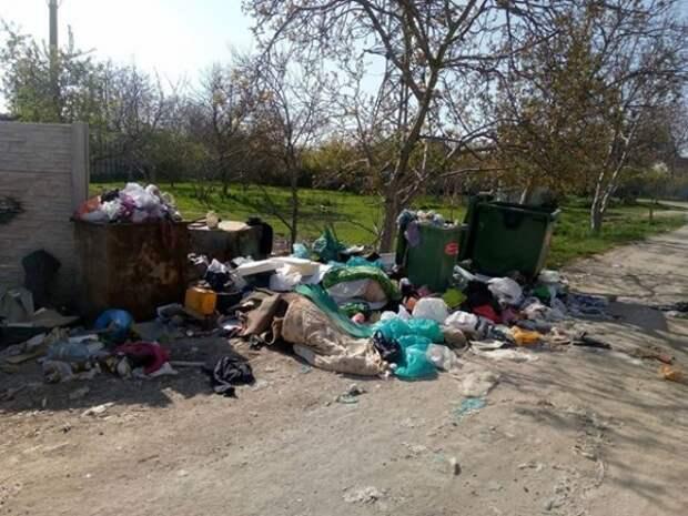 Дождались! Муниципалитеты Севастополя займутся свалками