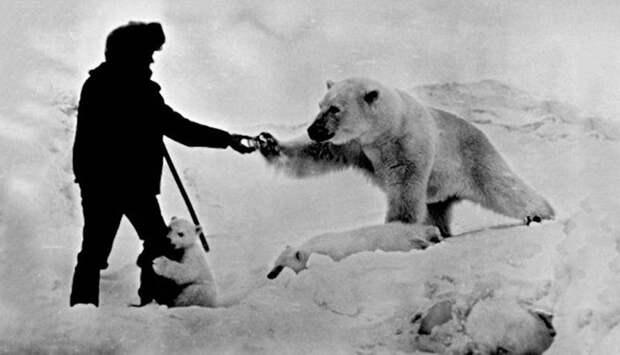 Забористые байки про жизнь советских полярников