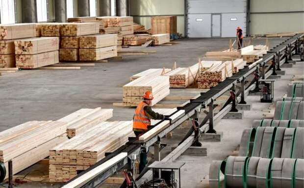 В России возник дефицит строительной древесины
