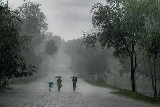 В Краснодарский край вновь придут дожди