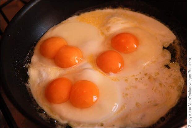 А вы знаете, почему в яйце бывает два желтка? Рассказываю
