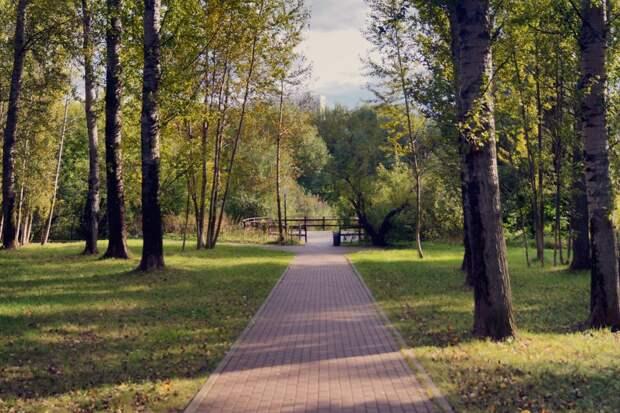 Фото дня: смотровая площадка в Медведкове