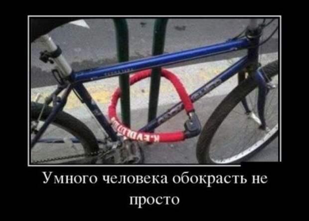 1454520978_1454517926_demotivatory_29