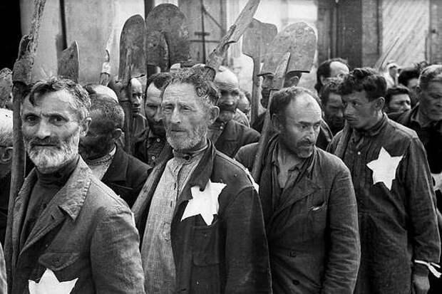 Почему евреи определяют национальность поматери