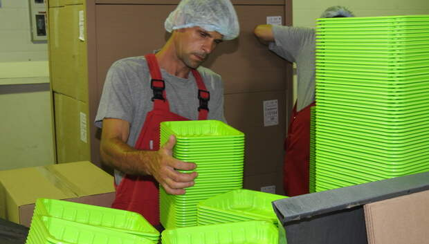 Жители Подмосковья устраиваются на работу кладовщиками и упаковщиками