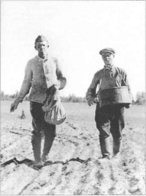 Военнослужащий Вермахта и русский крестьянин сеют хлеб, 1942–1943 годы.