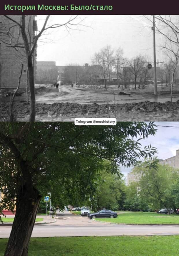 Фото дня: как изменилась улица Усиевича за полвека