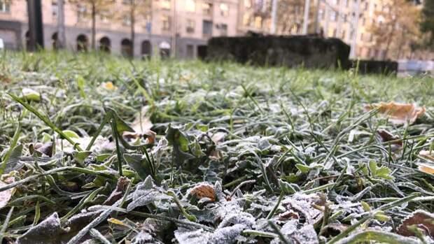 Жителей Москвы предупредили о скорых заморозках
