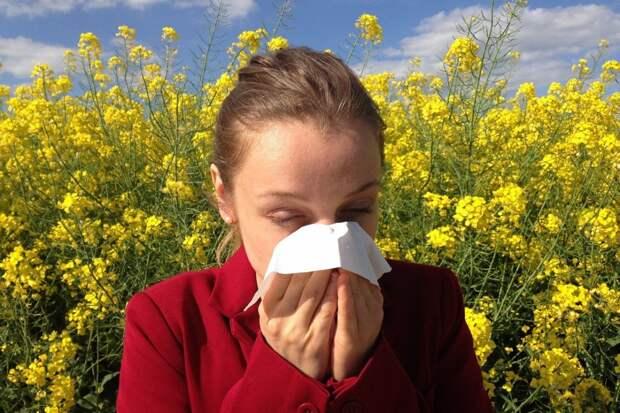 Назван способ полностью избавиться от аллергии