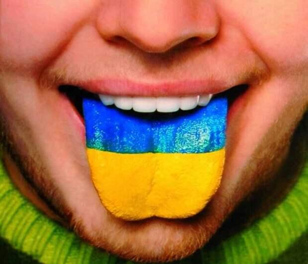 «Латинизация Украины» — информационный удар по позициям России?