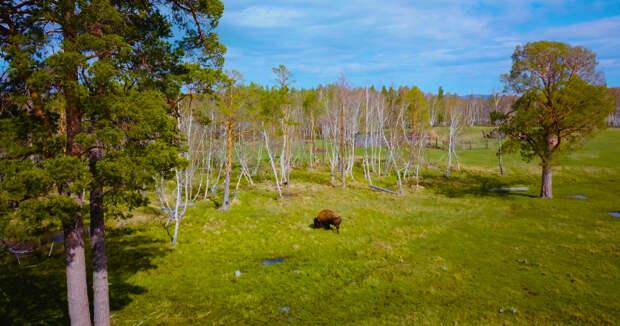 Тайна Чертова озера: чем манит путешественников Каркаралинск?