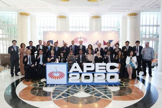 Деловой саммит АТЭС – 2020
