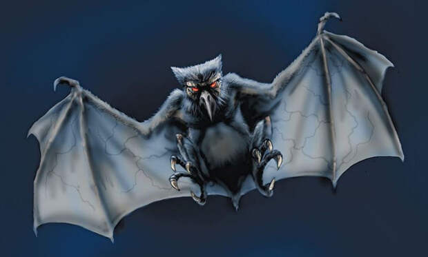 Загадочные существa, крылатое существо, существо
