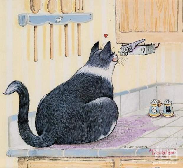 Коты Gary Pattreson