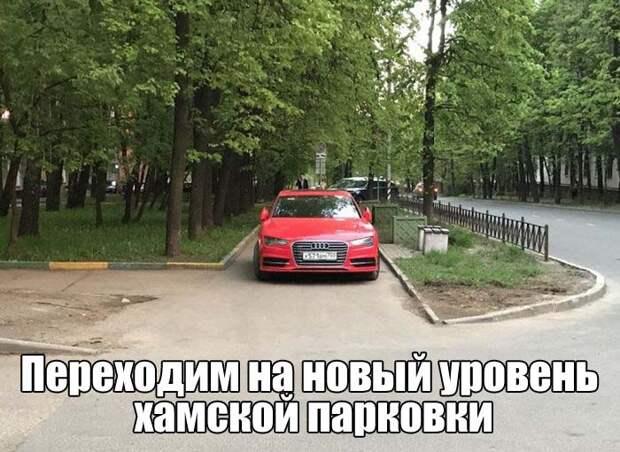 Смешные картинки с надписями со смыслом (12 фото)