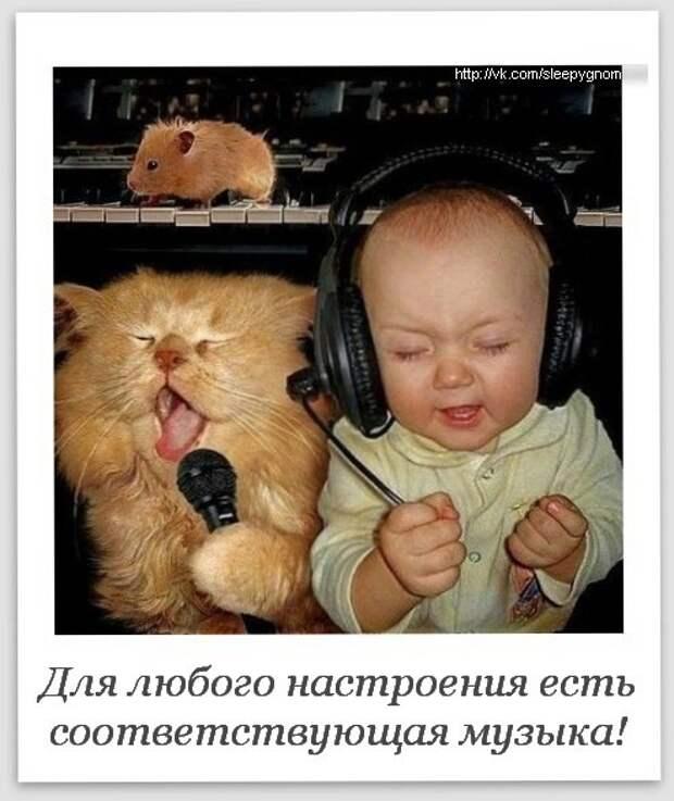 Прикольные картинки и забавные фото с надписями для хорошего настроения