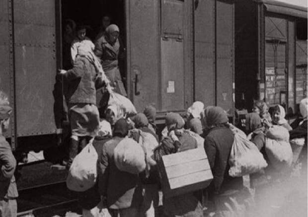 На каких условиях Сталин депортировал кавказцев в 1943 году